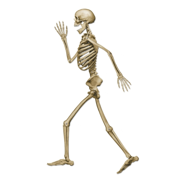 Cut-Out-Skelett Piet Profil, 94cm groß