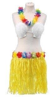 Hawaii-Kostüm-Set mit Rock, BH und Hawaiikette