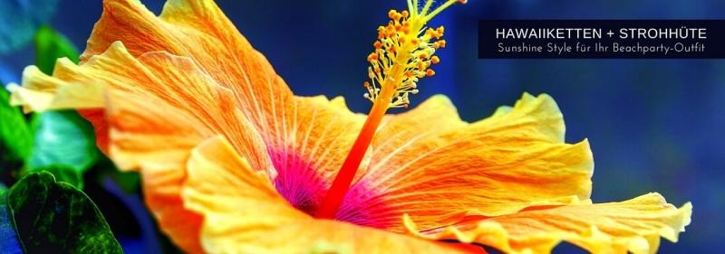 Hawaiiketten ü Strohhuete Beachparty Zubehoer + Karibik Strandparty Deko