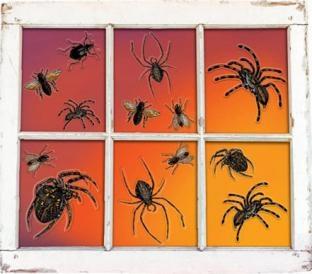 Fenster-Aufkleber Grusel-Tiere
